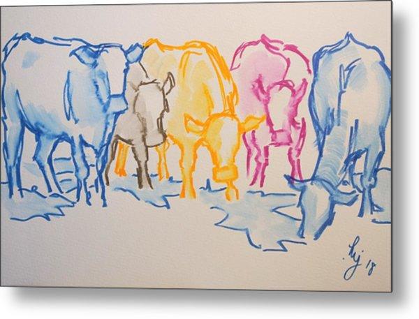 Five Cows Five Colors Watercolor Line Drawing Metal Print