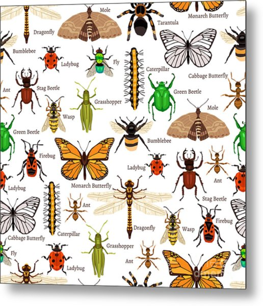 Flat Insects Seamless Pattern Vector Metal Print