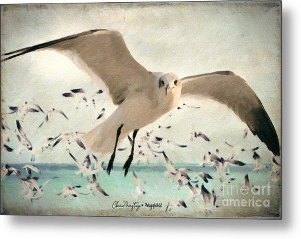 Flight Of The Gulls Metal Print