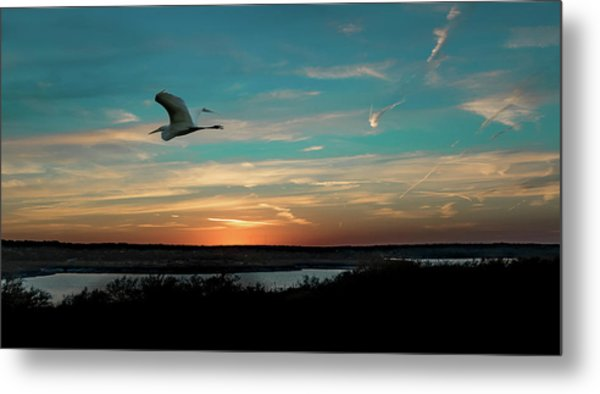Flight To The Lake Metal Print