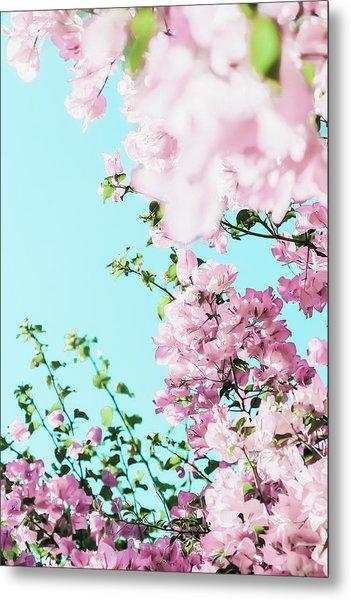 Floral Dreams I Metal Print