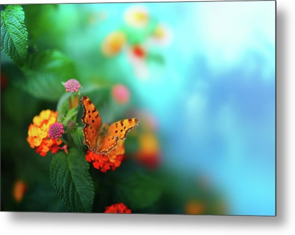 Flower Background With Butterfly Metal Print by O-che