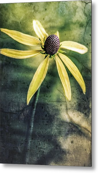 Metal Print featuring the photograph Flower Texture by Michael Arend