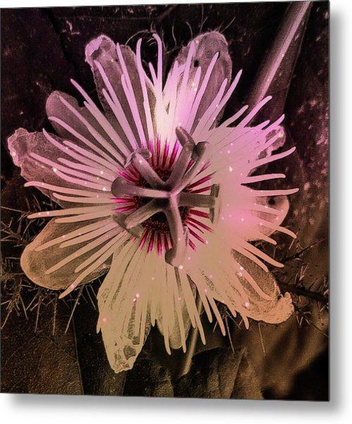 Flower With Tentacles Metal Print