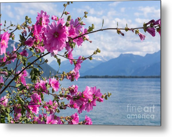 Flowers Against Mountains And Lake Metal Print