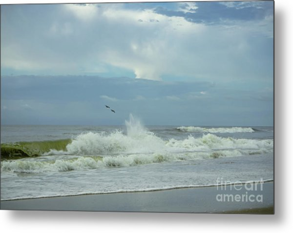 Fly Above The Surf Metal Print