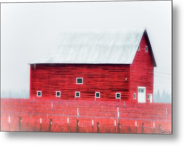 Foggy Country Scene Metal Print