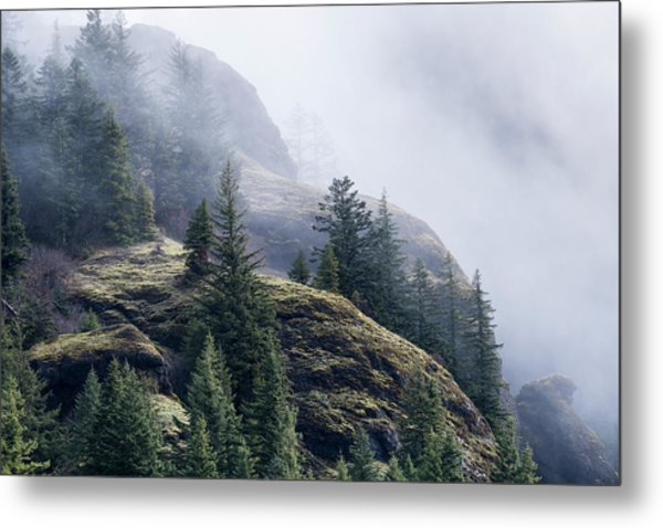 Foggy On Saddle Mountain Metal Print