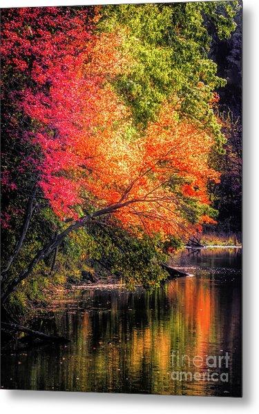 Foliage Over Forge Pond Metal Print
