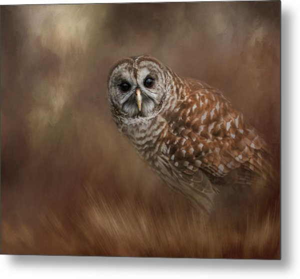 Foraging In The Field Metal Print