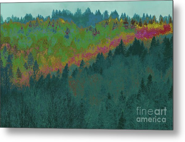 Forest And Valley Metal Print