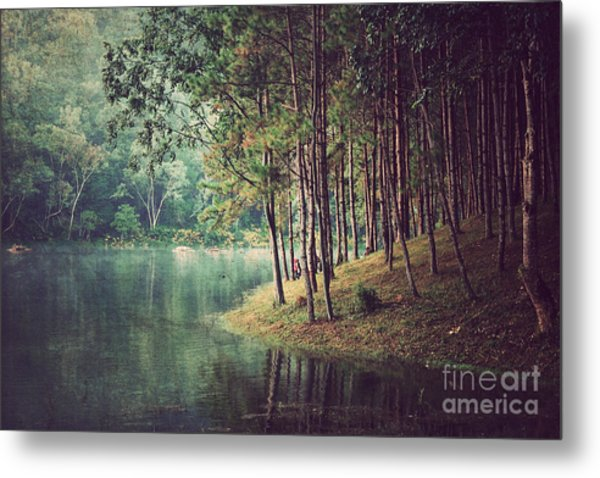 Forest Background ,vintage Style Metal Print