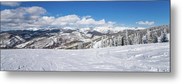 Forest Covered By Snow With Skiing Metal Print
