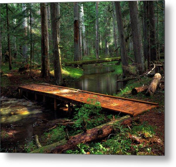 Forest Foot Bridge Metal Print by Leland D Howard