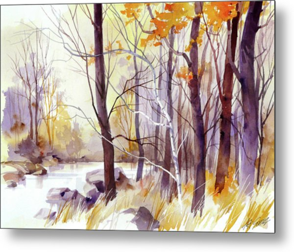 Forest Pond Metal Print by Art Scholz