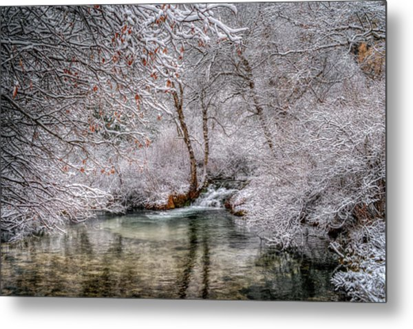 Frosty Pond Metal Print