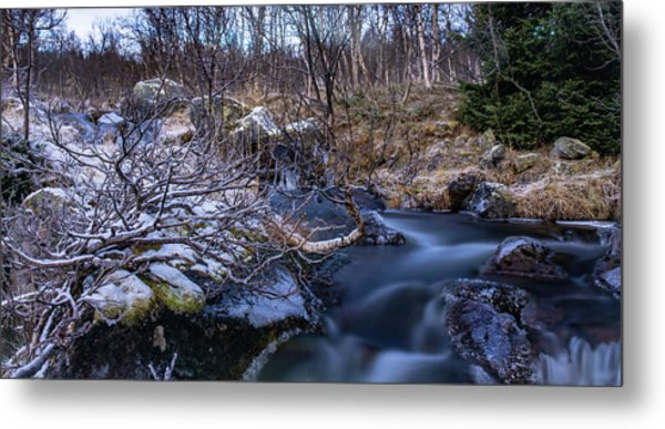 Frozen River And Winter In Forest Metal Print