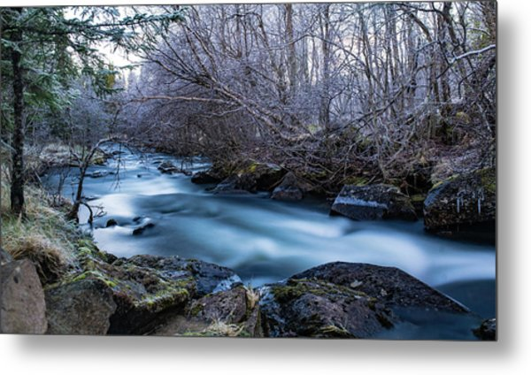 Frozen River Surrounded With Trees Metal Print