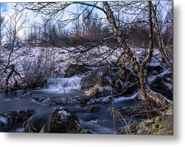 Frozen Tree In Winter River Metal Print