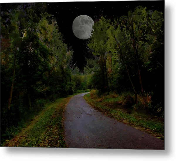 Full Moon Over Forest Trail Metal Print by Cedric Hampton