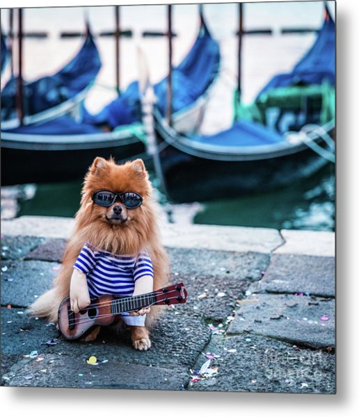 Funny Dog At The Carnival In Venice Metal Print