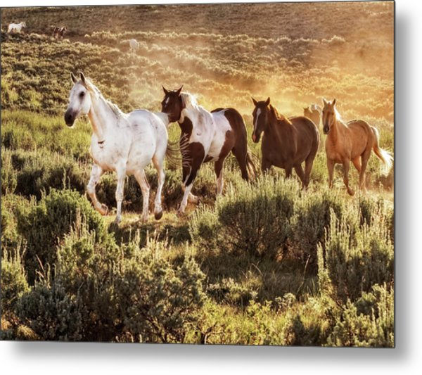 Galloping Down The Mountain Metal Print
