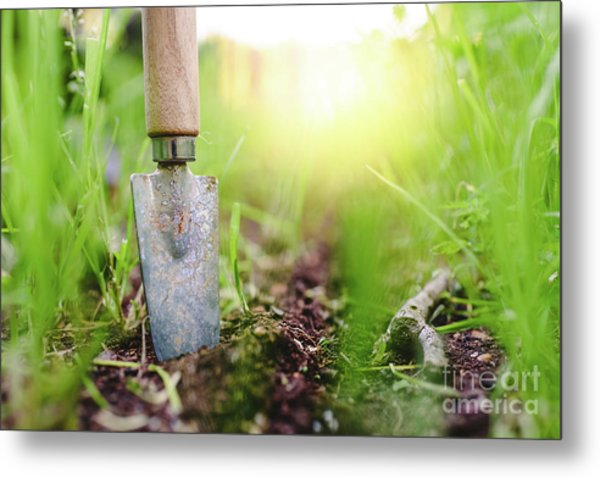 Gardening Shovel In An Orchard During The Gardener's Rest Metal Print