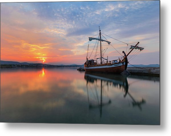 Metal Print featuring the photograph Gaul by Davor Zerjav