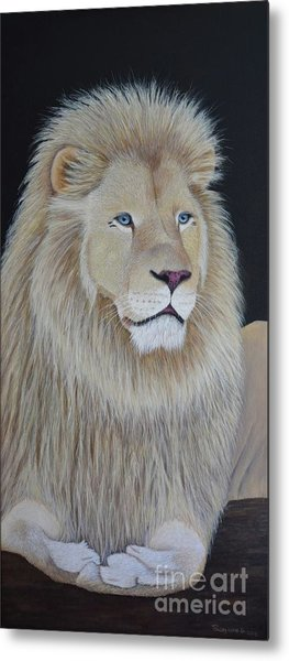 Gentle Paws Metal Print