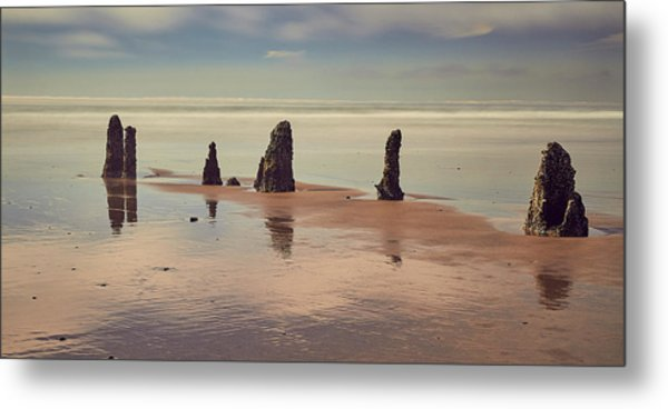 Metal Print featuring the photograph Ghost Forest by Whitney Goodey
