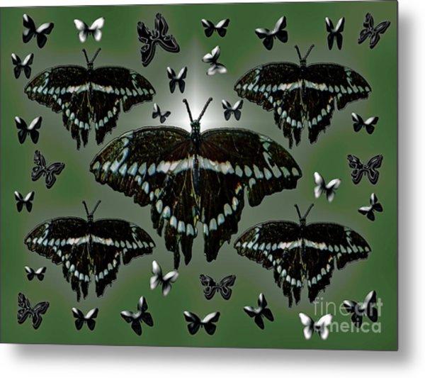 Giant Swallowtail Butterflies Metal Print