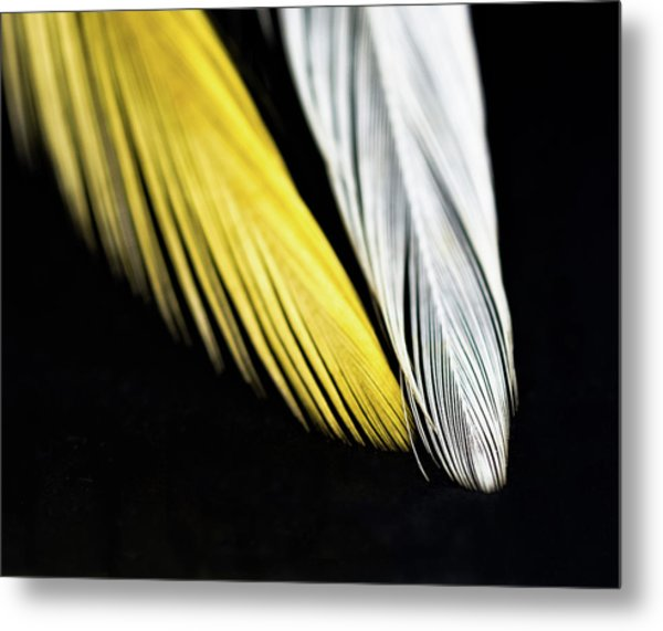 Give Me Wings So I Can Fly Metal Print