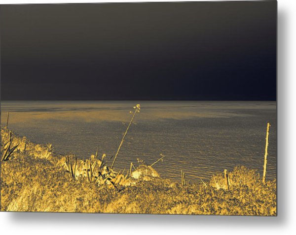 Golden Hues In The Night Metal Print