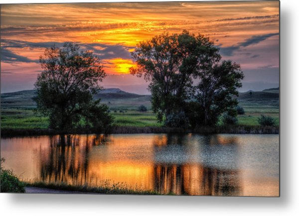 Golden Pond At 36x60 Metal Print