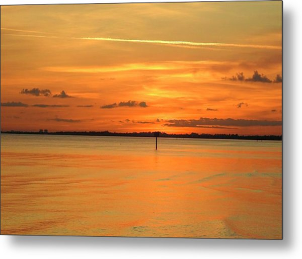 Golden Metal Print