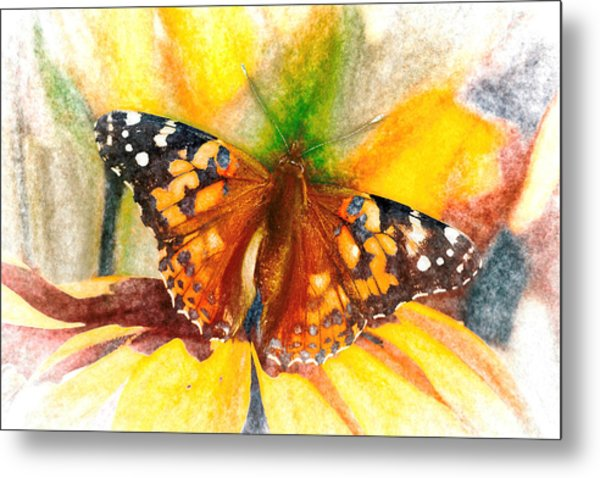Gorgeous Painted Lady Butterfly Metal Print