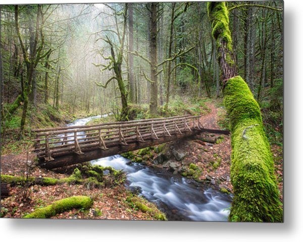 Metal Print featuring the photograph Gorton Creek by Nicole Young