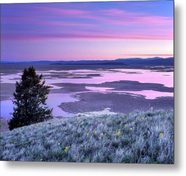 Grays Lake Sunrise Metal Print