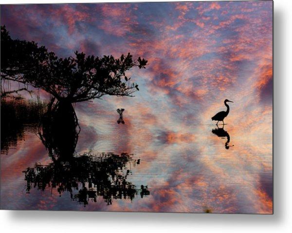 Great Blue Heron And Red Mangrove Metal Print