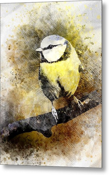Great Tit Metal Print