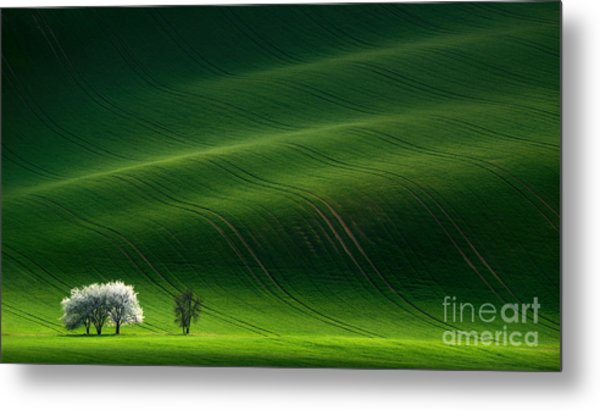 Green Rolling Spring Landscape With Metal Print by Vlad Sokolovsky