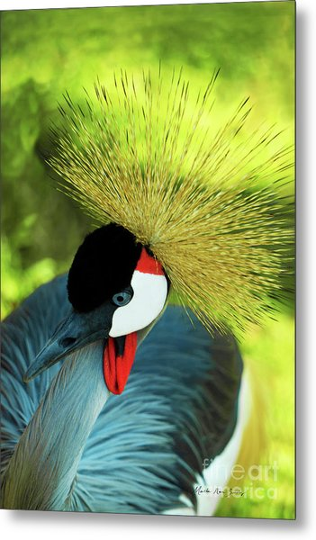 Metal Print featuring the painting Grey Crowned Crane Gulf Shores Ab A101218 by Mas Art Studio