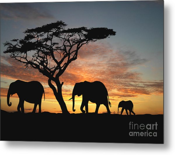 Group Of Elephant In Africa Metal Print