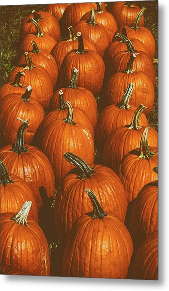 Halloween Harvest - 2 Metal Print