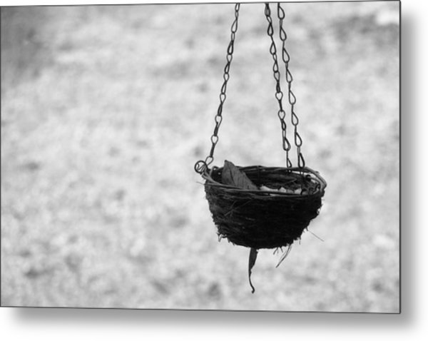 Hanging Basket Metal Print