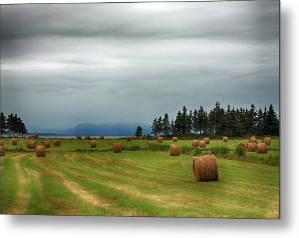 Metal Print featuring the photograph Harvest Time In Canada by Tatiana Travelways