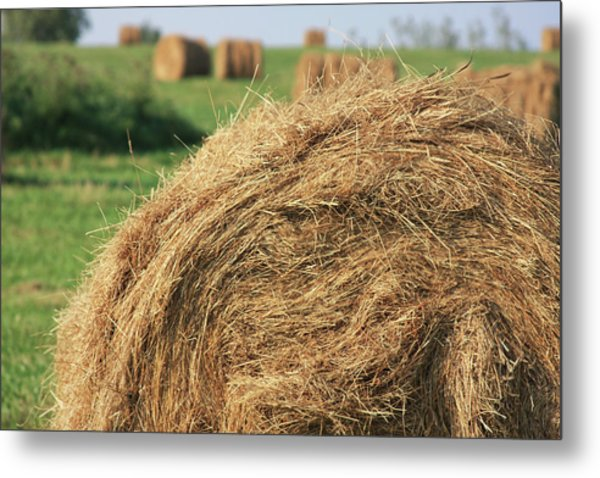 Metal Print featuring the photograph Hay Bail Closeup by Tatiana Travelways