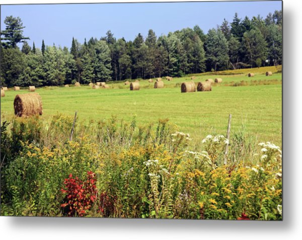 Metal Print featuring the photograph Hay Bails And Wild Flowers by Tatiana Travelways