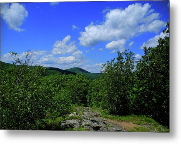 Metal Print featuring the photograph Heading Bear Mountain Connecticut On The Appalachian Trail by Raymond Salani III