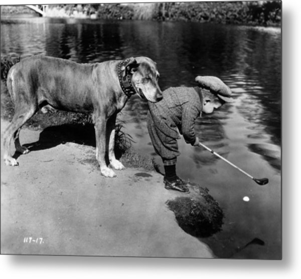 Helpful Dog Metal Print by General Photographic Agency